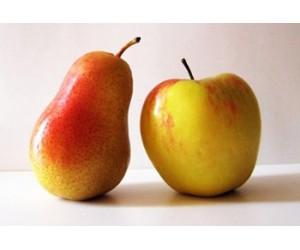 Как посадить яблоню и грушу в саду?!